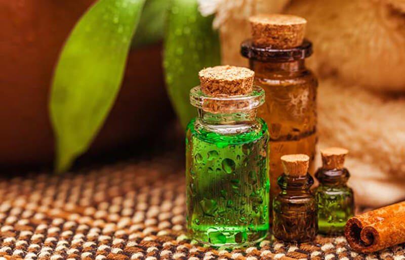 Tinh dầu cây tràm trà và mật ong trị mụn
